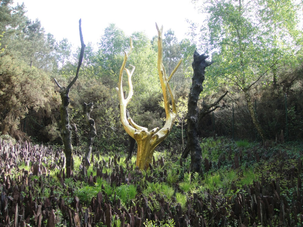 Arbre d'or forêt de Brocéliande